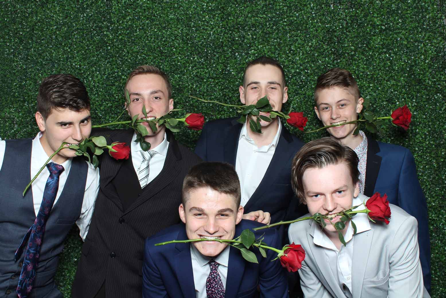 Green Wall backdrop for Photo booth